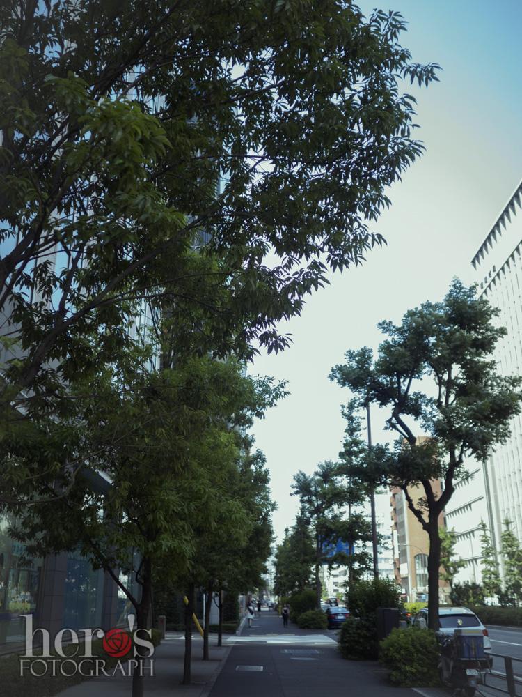 日比谷通り_01