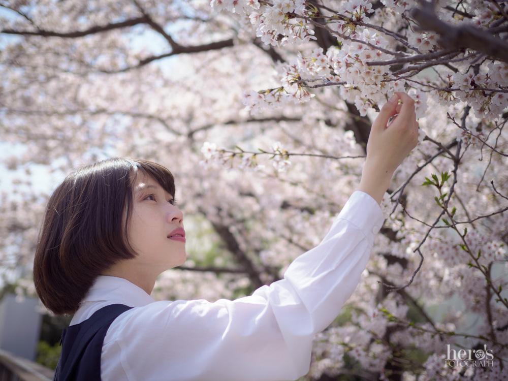伊東みく_桜_02