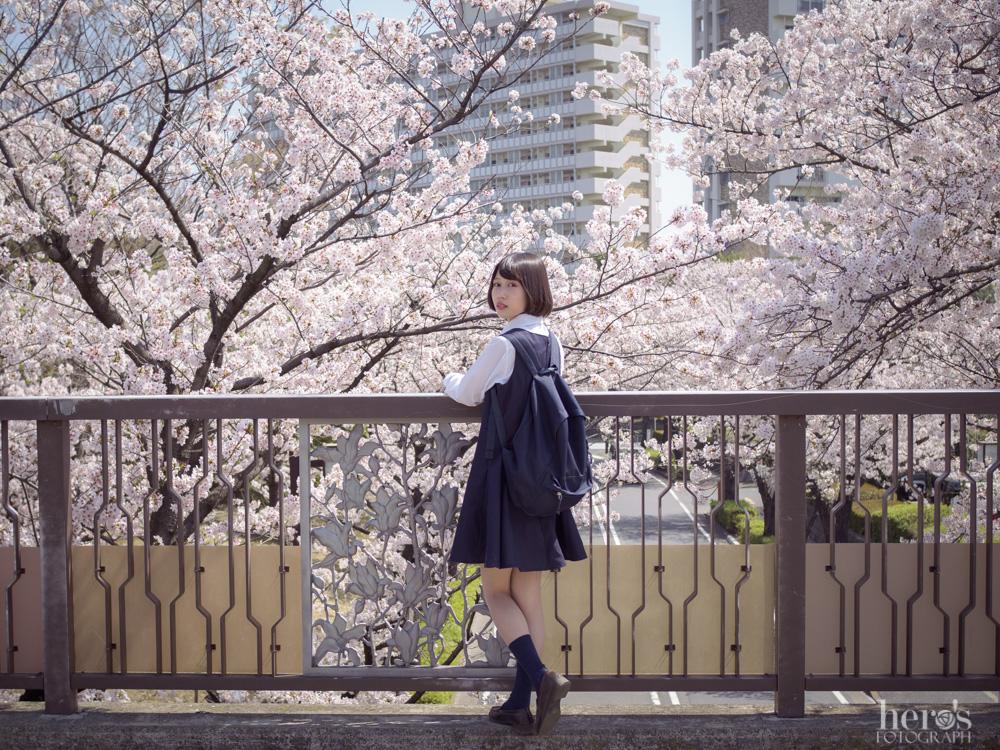 伊東みく_桜_03