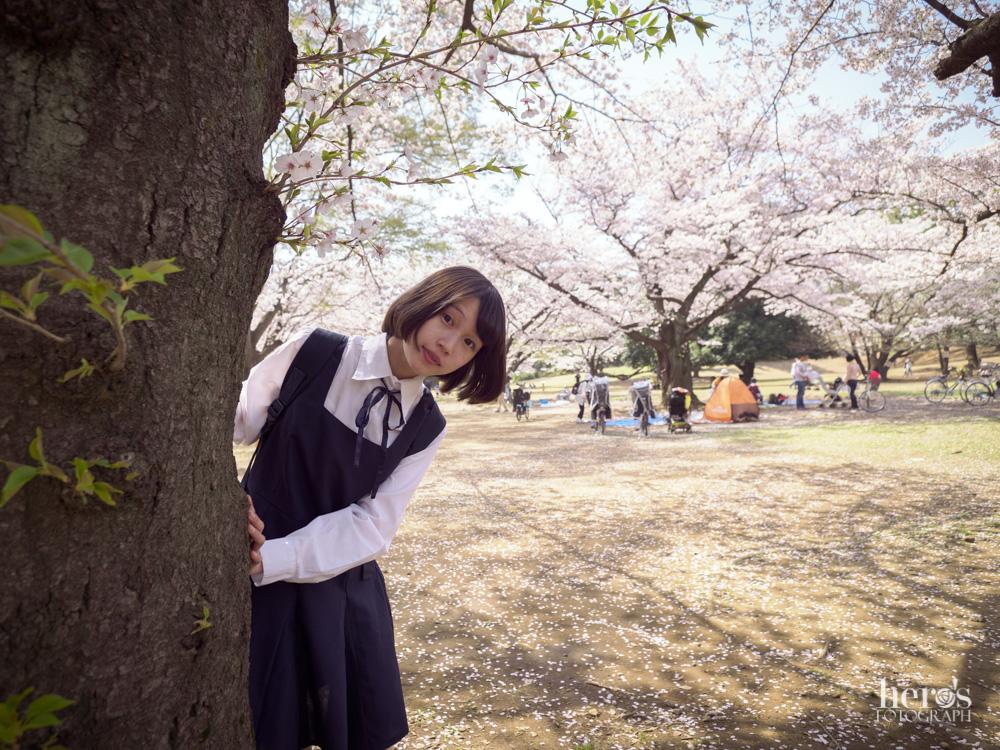 伊東みく_桜_07