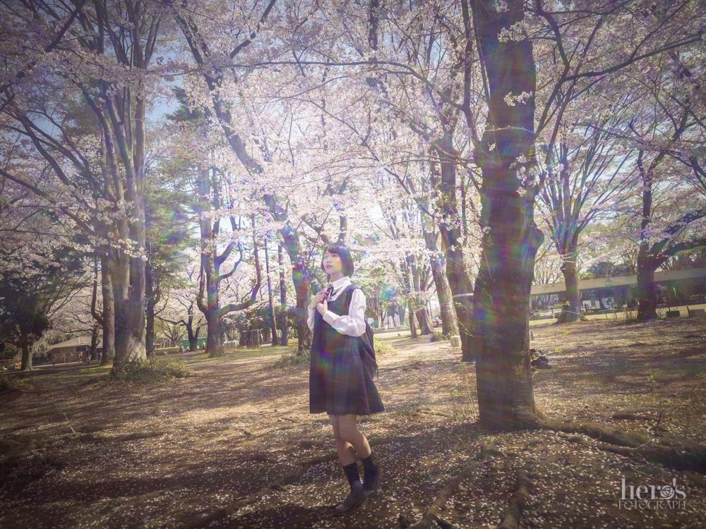 伊東みく_桜_08