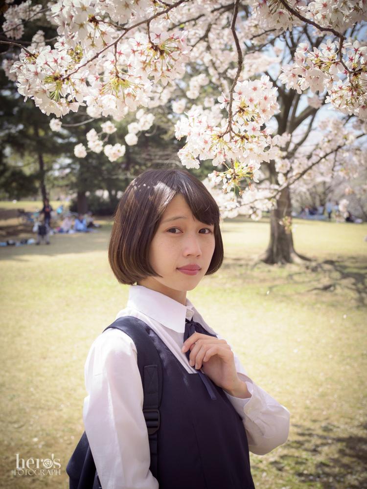 伊東みく_桜_10