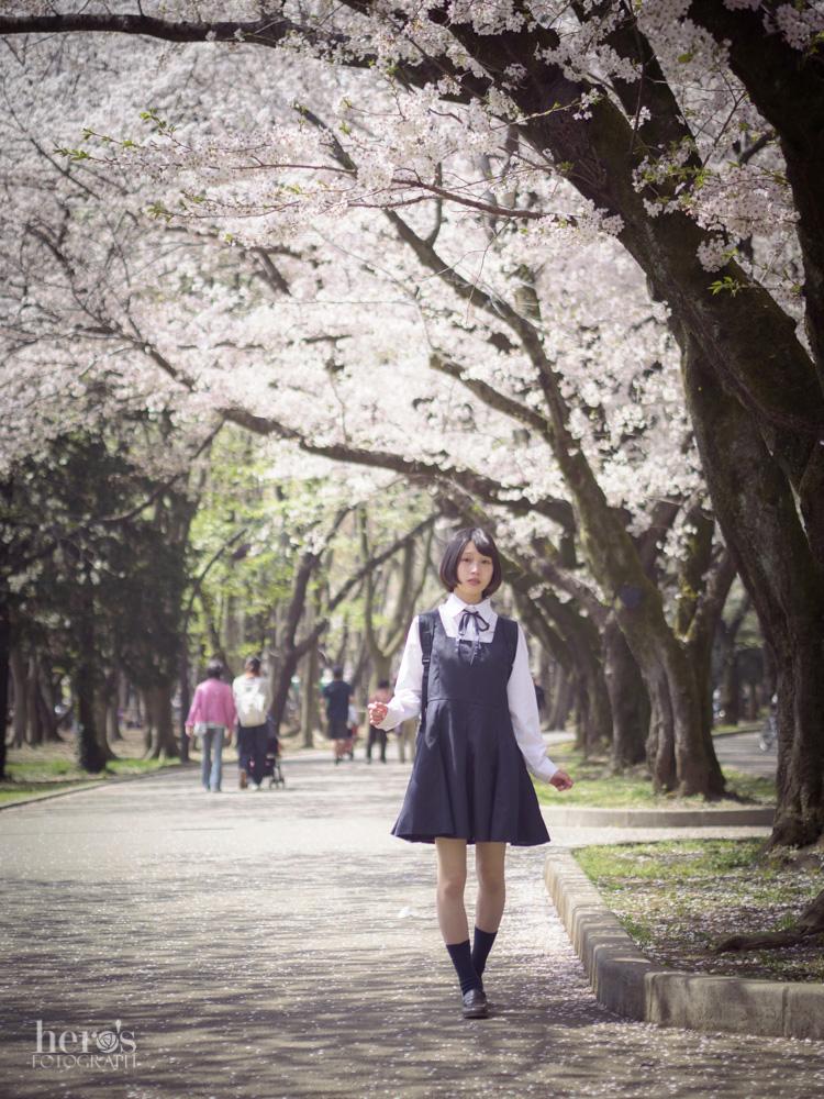 伊東みく_桜_20