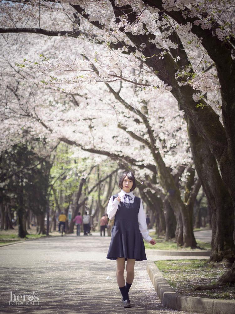 伊東みく_桜_21