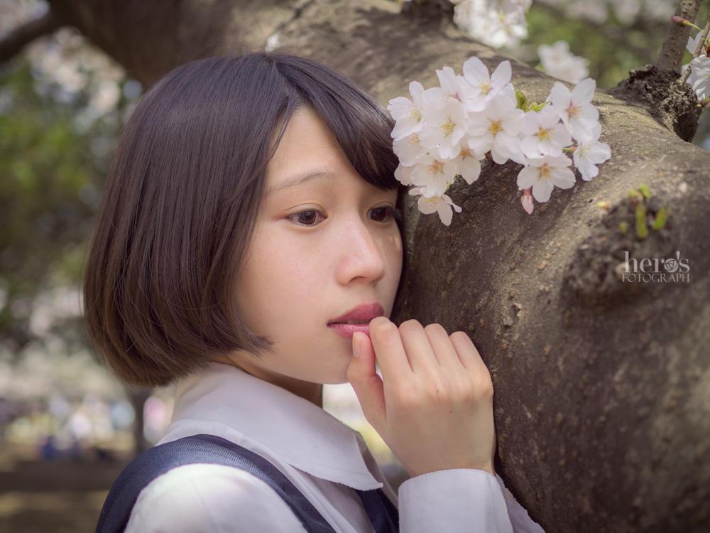 伊東みく_桜_29