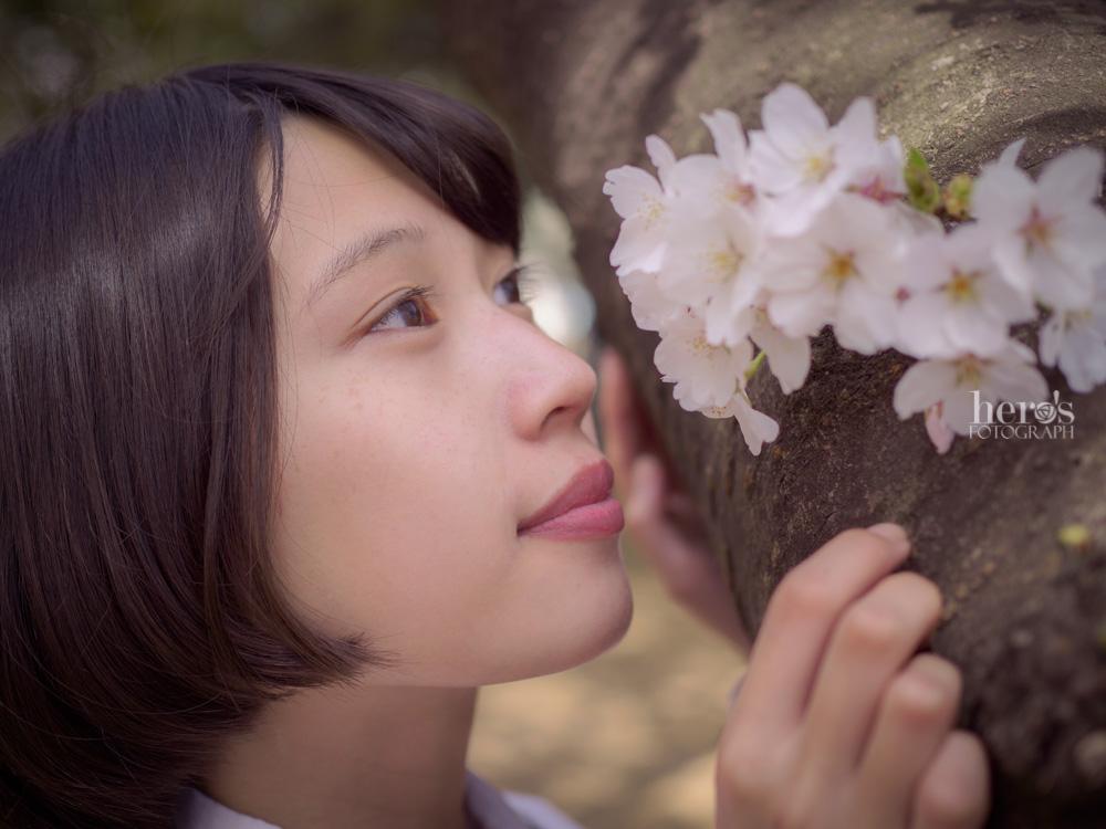 伊東みく_桜_30