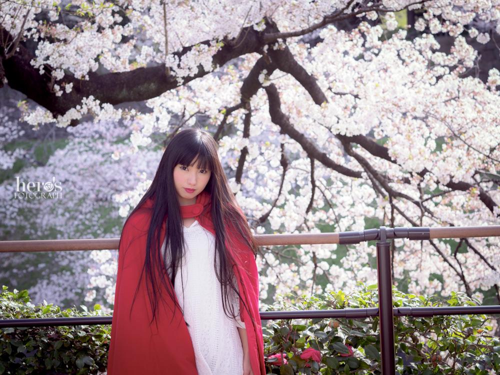 秋元るい_桜_04