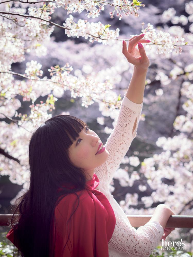 秋元るい_桜_08