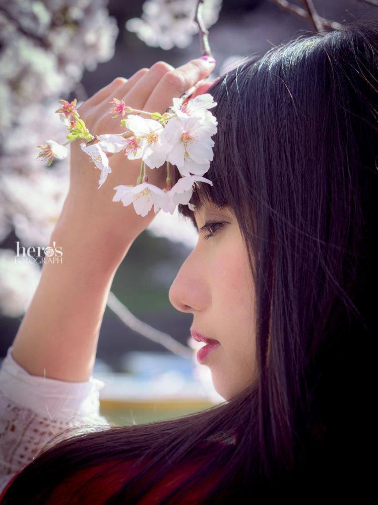 秋元るい_桜_09