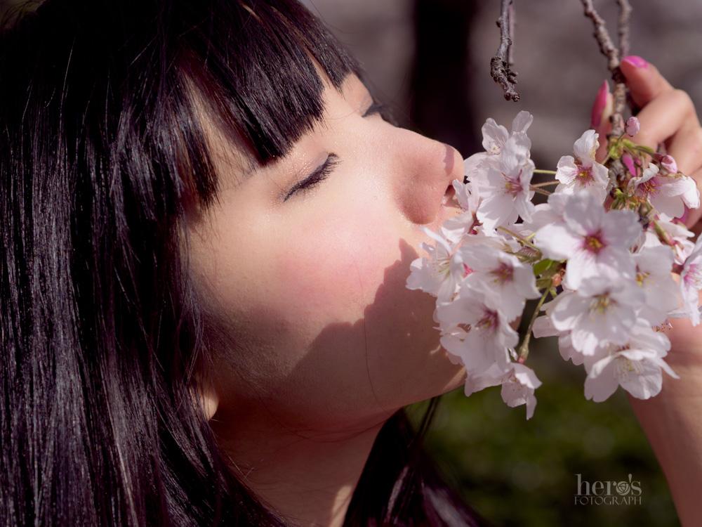 秋元るい_桜_11