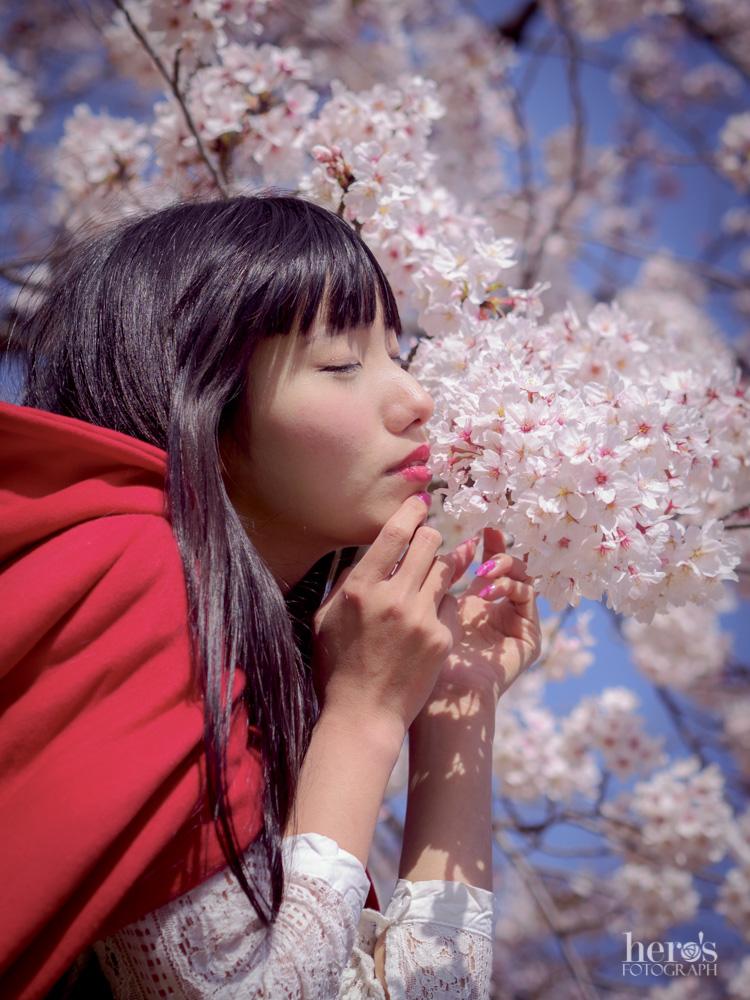 秋元るい_桜_14