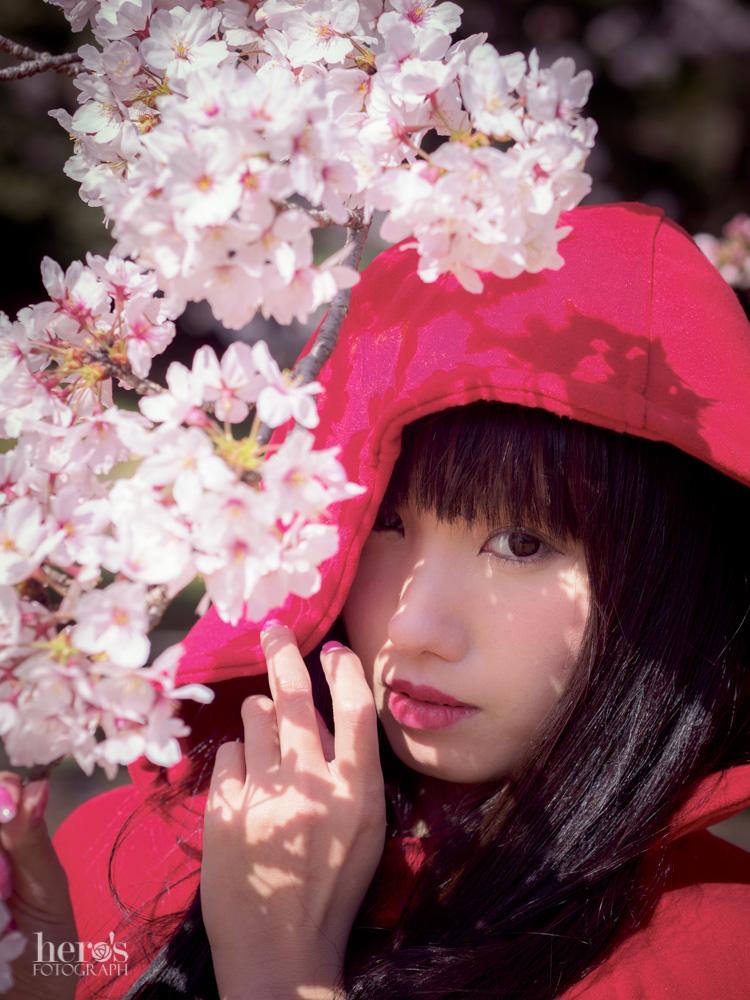 秋元るい_桜_15