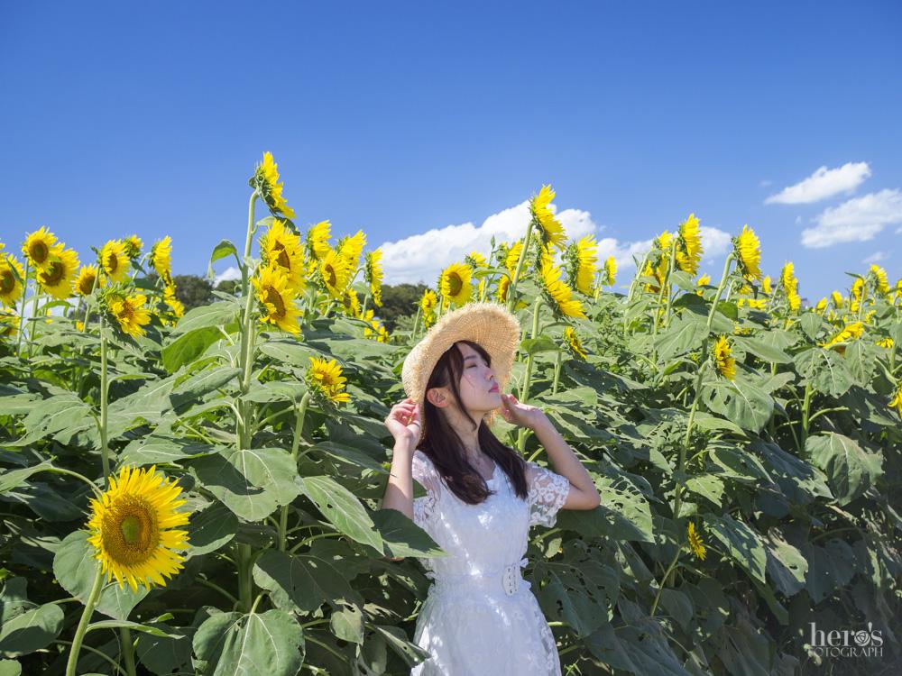 朝花和りぃこ_宇佐川りかこ_ひまわり_09
