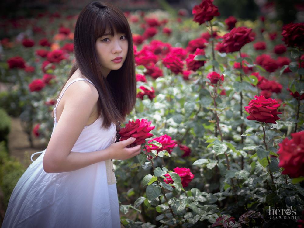 美写もん展_ひーろ_桜