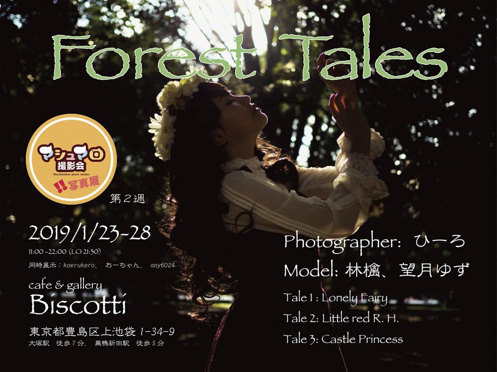 マシュマロ写真展_Forest_Tales